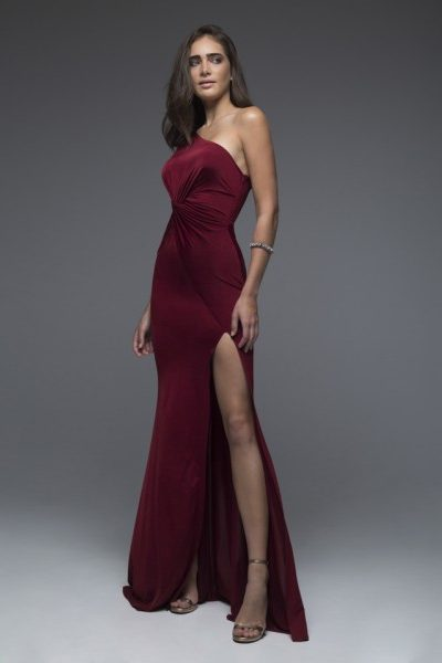 Scarlet Wine Red Dress